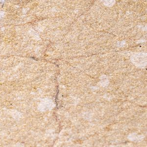 golden-primrose-sb-2